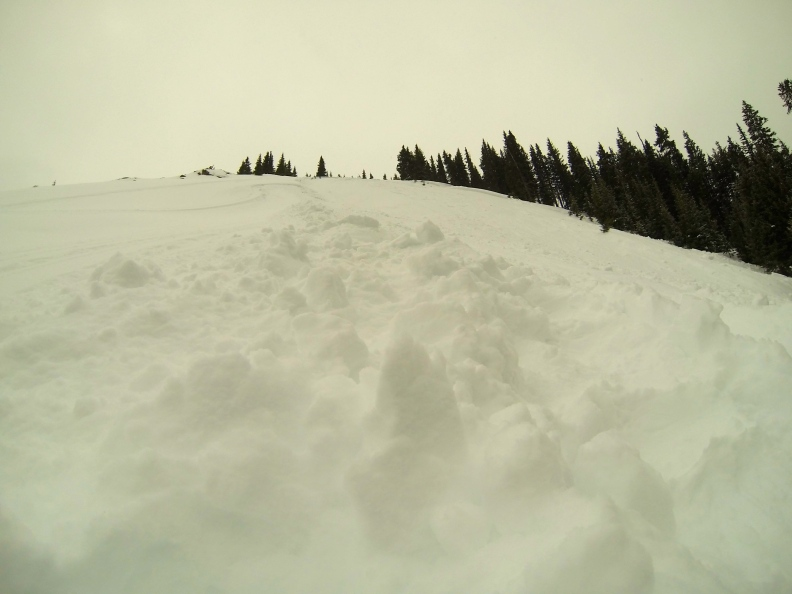 Looking up the slope of the avalanche.