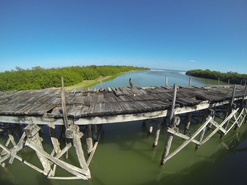 Standing on the new bridge at Boca Paila, looking at the old one. Although it's hard to believe, we drove over that one last time we headed to Punta Allen!