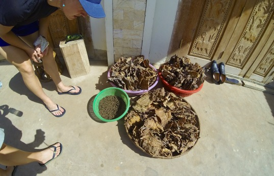Peppercorns (in the green basket) and mystery substances drying in the sun outside our guesthouse.