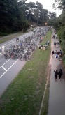 Bike parking at Hardly Strictly Bluegrass.