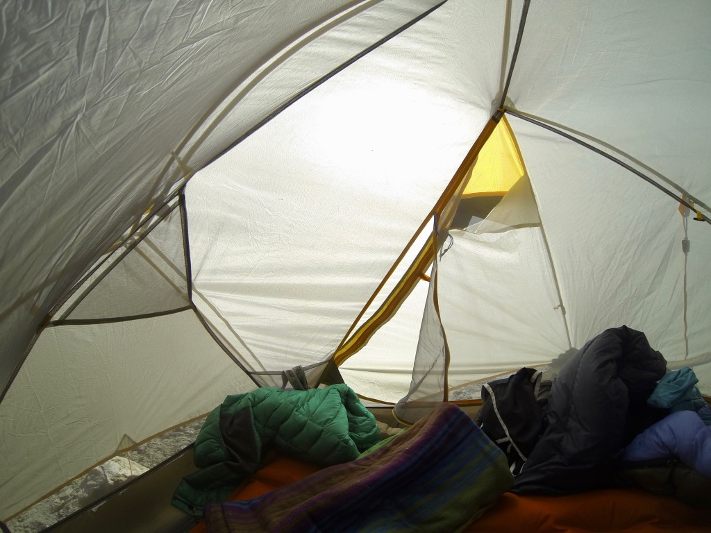 The view from inside my tent at daybreak.