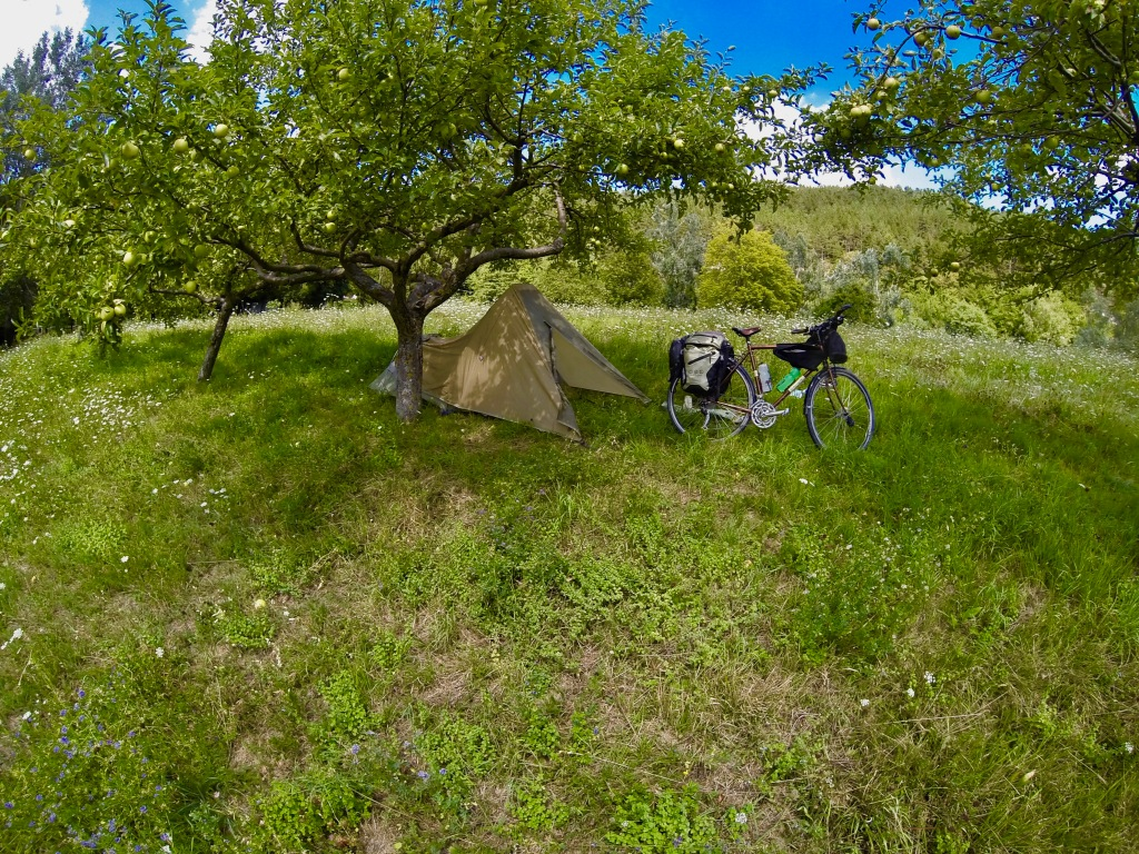 Camping in an apple orchard in the Apennine mountains with my bike.